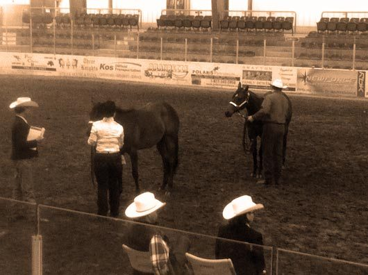 Drayton Valley Paint Horse Show July 2011