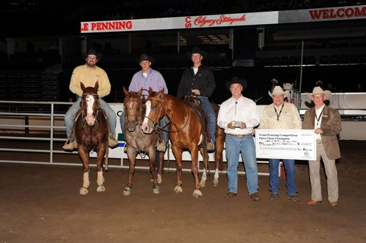 Calgary Stampede Team Penning Open Champs