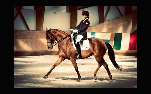 Canada's Para-Equestrian Team