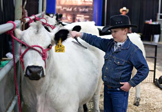 Farm and Ranch Show