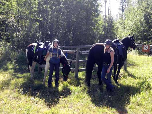 Alberta Equestrian Awareness Society