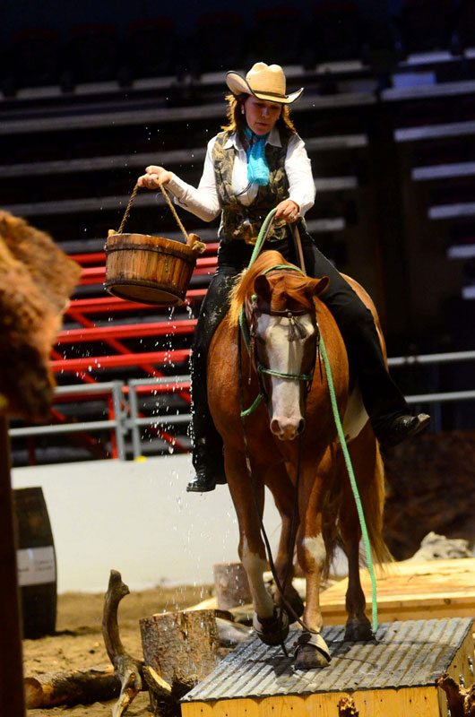 Cowboy Up Calgary Stampede