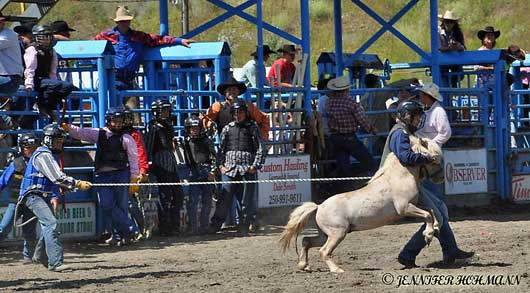 Quesnel Rodeo