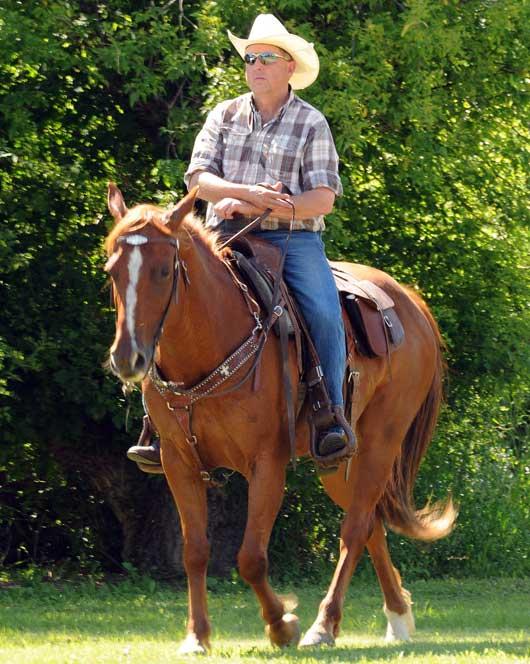 Saskatchewan APHA Trail Ride