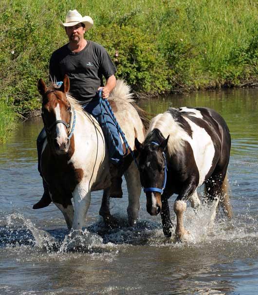 APHA Saskatchewan Trail Ride