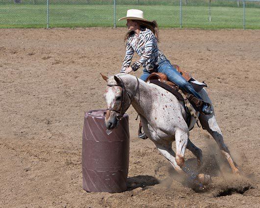 Laura-Gene Haga Texcel Lacombe Light Horse Show