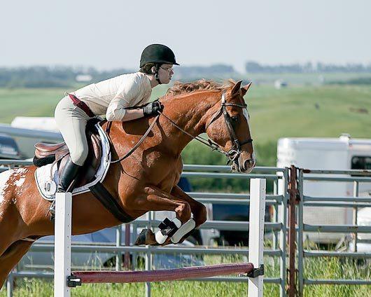 Kaylee McLachlin Amigo Didsbury Horse Show Battle of the Breeds