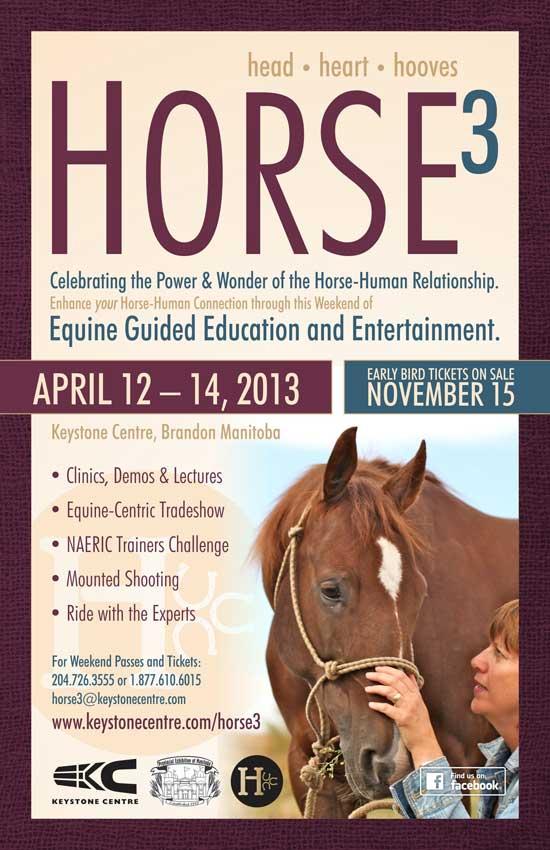 Horse3 Keystone Centre