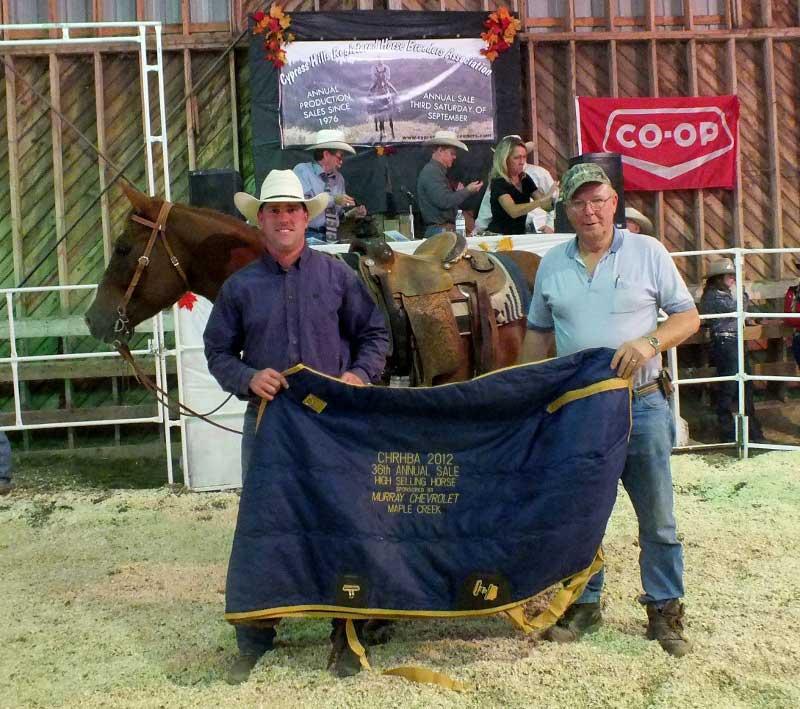 Cypress Hills Horse Sale