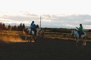 Lead Loping Lindsay Grice Diagonals Trotting Trot Horse Training