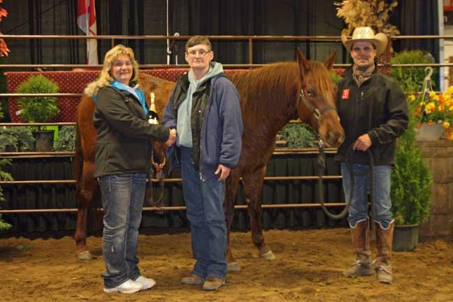 Prairie Horse Sale