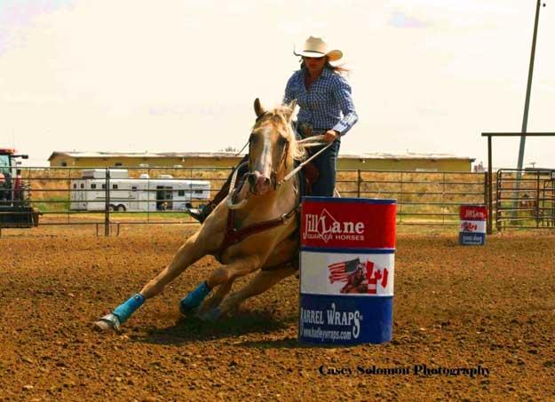 Billings Livestock