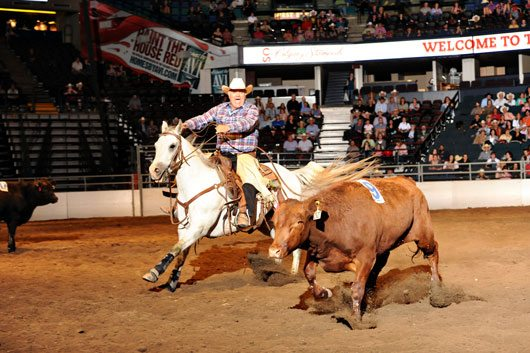 Calgary Stampede Penning Champions
