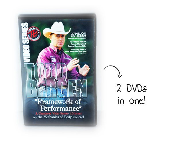 Bergen-DVDs