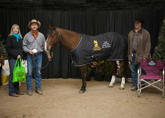 PHNon-Pro-Reserve-Ranch-Horse