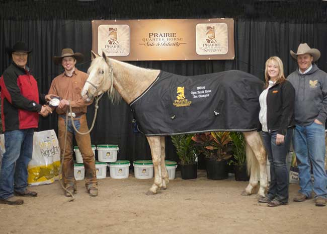 PHOpen-RanchHorse-Reserve-Champion