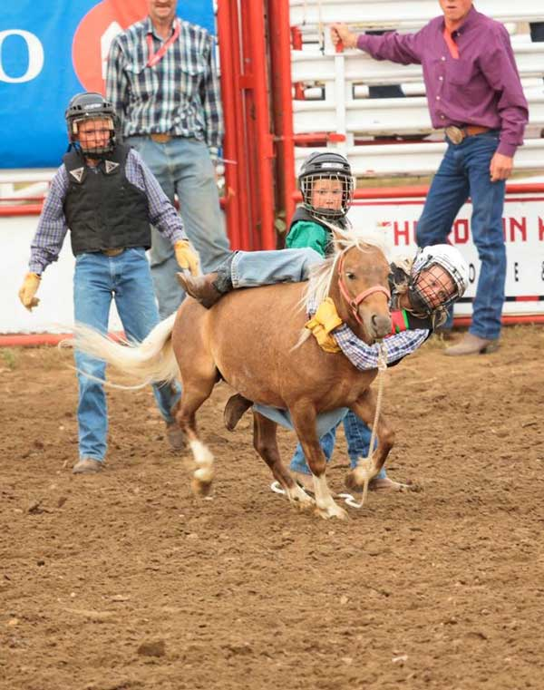 Wild Pony Racers at the Cowtown Pro Rodeo in Maple Creek. Photo by Kate Winquist, taken from The Advance Facebook page.