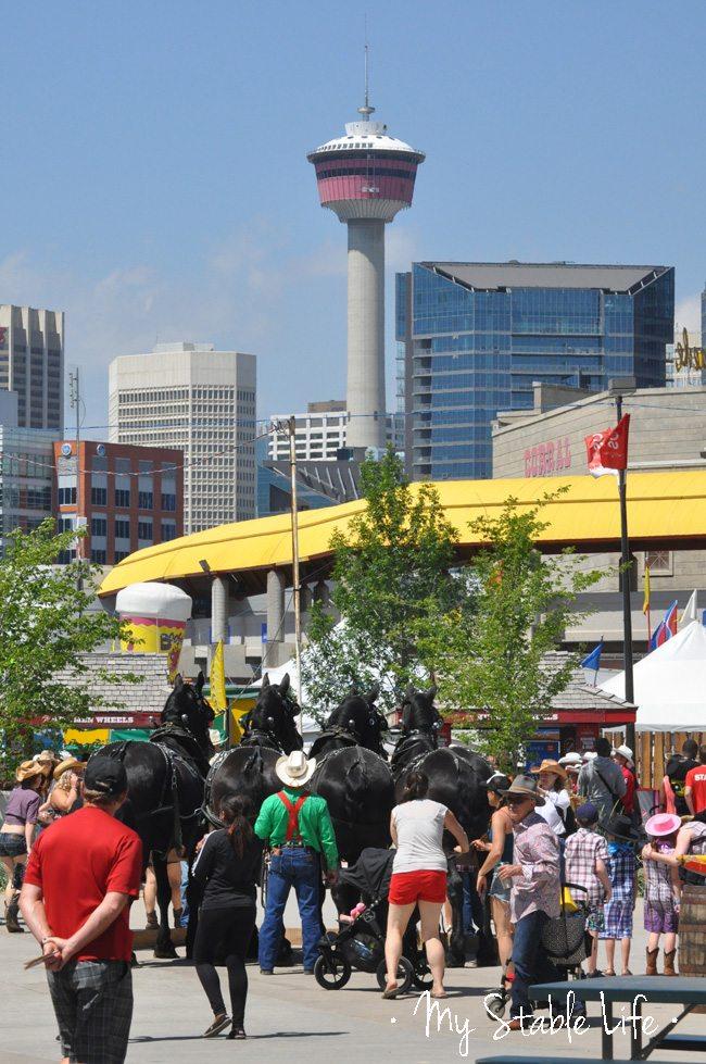 Calgary Stampede, Calgary Tower