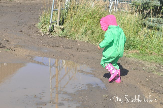 Mud-puddles
