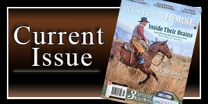 Current-Issue-4