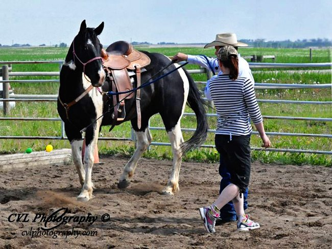Brent helping a colt learn to lunge.