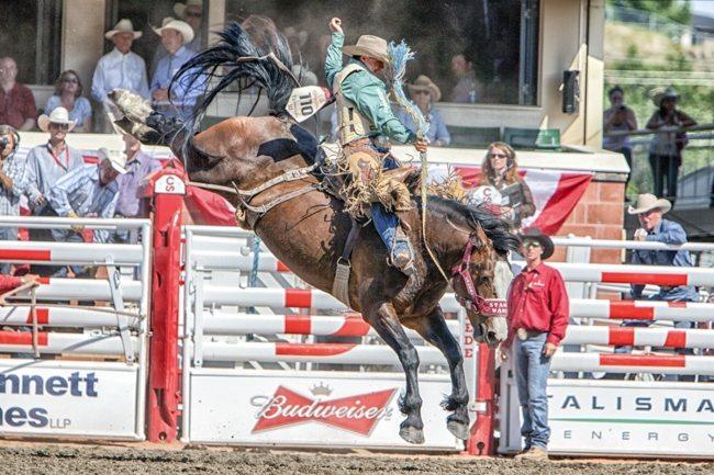CS Rodeo 2014_4 Round-5354 (650x433)