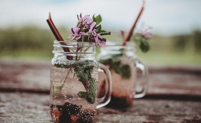 Sparkling Saskatoon & Rhubarb Drink